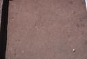 Warren Wilson Site (Bn 29), Sq. 120R330, Bottom Plowed Soil, Buncombe Co., North Carolina, United States (RLA image 3749.jpg)