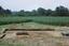 Coweeta Creek Mound (Ma 34), General View of Excavation, Macon Co., North Carolina, United States (RLA image 22813.jpg)