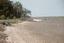 Wilmington Island, Shell on Edge of Marsh, Georgia, United States (RLA site Geo 147, image 22615.jpg)