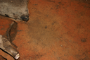 Nassaw-Weyapee (SoC 643), Feature 58, Top, York Co., South Carolina, United States (RLA image D10167.jpg)