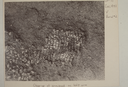 Wall Site (Or 11), Burial 2, Close-up of Beads (B&W Print # 768), Orange Co., North Carolina, United States (RLA image 22648.jpg)
