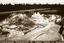 Town Creek (Mg 2), Profile 70-85R30 (B&W Print # 469), Montgomery Co., North Carolina, United States (RLA image 22967.jpg)