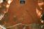 Nassaw-Weyapee (SoC 643), Sq. 602R546, Top of Subsoil (Mosaic Photo), York Co., South Carolina, United States (RLA image D10106.jpg)