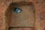 Nassaw-Weyapee (SoC 643), Feature 54, South Half, Base of Zone 3, York Co., South Carolina, United States (RLA image D10131.jpg)