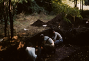 Hardaway Site (St 4), Phelps and Crew Troweling, Stanly Co., North Carolina, United States (RLA image 22682.jpg)