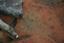 Nassaw-Weyapee (SoC 643), Feature 58, Top, York Co., South Carolina, United States (RLA image D10165.jpg)