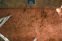 Nassaw-Weyapee (SoC 643), Sq. 592R575, Top of Subsoil (Mosaic Photo), York Co., South Carolina, United States (RLA image D10172.jpg)