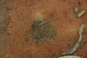 Nassaw-Weyapee (SoC 643), Feature 51 (Cob-Filled Pit), Top, York Co., South Carolina, United States (RLA image D10108.jpg)