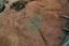 Nassaw-Weyapee (SoC 643), Feature 56, Top, York Co., South Carolina, United States (RLA image D10161.jpg)