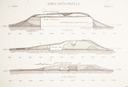 Town Creek (Mg 2), North-South Mound Profiles (Coe 1995:Fig. 4.6), Montgomery Co., North Carolina, United States (RLA image 22976.jpg)