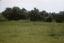 Shell Ring on Hilton Head, South Carolina, United States (RLA image 22558.jpg)