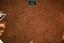 Nassaw-Weyapee (SoC 643), Sq. 591R575, Top of Subsoil (Mosaic Photo), York Co., South Carolina, United States (RLA image D10177.jpg)