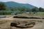 Coweeta Creek Mound (Ma 34), General View Showing Stacked Hearths, Macon Co., North Carolina, United States (RLA image 22816.jpg)