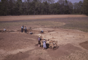 Wall Site (Or 11), View of Excavation and Structure D, Orange Co., North Carolina, United States (RLA image 22669.jpg)