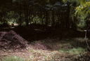 Hardaway Site (St 4), Phelps and Crew Digging, Stanly Co., North Carolina, United States (RLA image 22690.jpg)