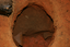 Nassaw-Weyapee (SoC 643), Feature 58, North Half, Zone 1 Excavated, Close-Up, York Co., South Carolina, United States (RLA image D10222.jpg)