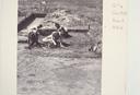 Wall Site (Or 11), Excavating in Area A (B&W Print # 260), Orange Co., North Carolina, United States (RLA image 22646.jpg)