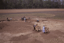 Wall Site (Or 11), View of Excavation and Structure D, Orange Co., North Carolina, United States (RLA image 22670.jpg)