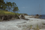 Moores Beach (Bf 37), Site P6 (Moore), Beaufort Co., North Carolina, United States (RLA image 22501.jpg)