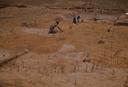 Wall Site (Or 11), Troweling Structure D, Orange Co., North Carolina, United States (RLA image 22665.jpg)