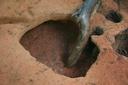 Nassaw-Weyapee (SoC 643), Feature 57, Excavated, York Co., South Carolina, United States (RLA image D10023.jpg)