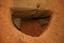 Nassaw-Weyapee (SoC 643), Feature 58, South Half Excavated, York Co., South Carolina, United States (RLA image D10219.jpg)