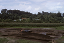 Coweeta Creek Mound (Ma 34), General View of Excavation, Macon Co., North Carolina, United States (RLA image 22856.jpg)