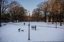 000117_winter_weather_snow022.jpg