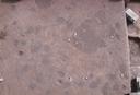 Warren Wilson Site (Bn 29), Sq. 120R320, Bottom Plowed Soil, Buncombe Co., North Carolina, United States (RLA image 3753.jpg)