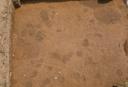 Warren Wilson Site (Bn 29), Sq. 120R310, Bottom Plow Soil, Buncombe Co., North Carolina, United States (RLA image 3624.jpg)