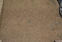 Warren Wilson Site (Bn 29), Sq. 120R330, Bottom Plowed Soil, Buncombe Co., North Carolina, United States (RLA image 3809.jpg)