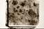 Town Creek (Mg 3), Mosaic Photo of Sq. -170L90 (Coe 1995:Fig. 3.8), Montgomery Co., North Carolina, United States (RLA image 22988.jpg)
