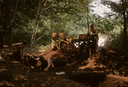 Hardaway Site (St 4), Phelps and Crew Digging and Sifting, Stanly Co., North Carolina, United States (RLA image 22696.jpg)