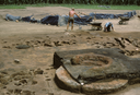 Coweeta Creek Mound (Ma 34), General View Showing Stacked Hearths, Macon Co., North Carolina, United States (RLA image 22810.jpg)