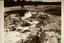 Town Creek (Mg 2), Mound Progress Photograph (B&W Print # 577), Montgomery Co., North Carolina, United States (RLA image 22971.jpg)
